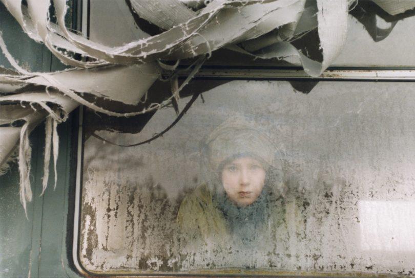 Sibylle Bergemann, Lily, Margaretenhof, 2003 (Foto: Sibylle Bergemann)