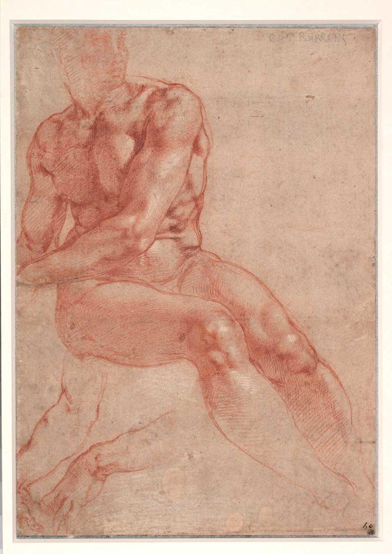 Michelangelo, Aktstudie