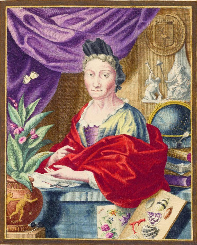 Porträt der Maria Sibylla Merian von Jacob Houbraken (Abb.: Wissenschaftliche Buchgesellschaft, Darmstadt)