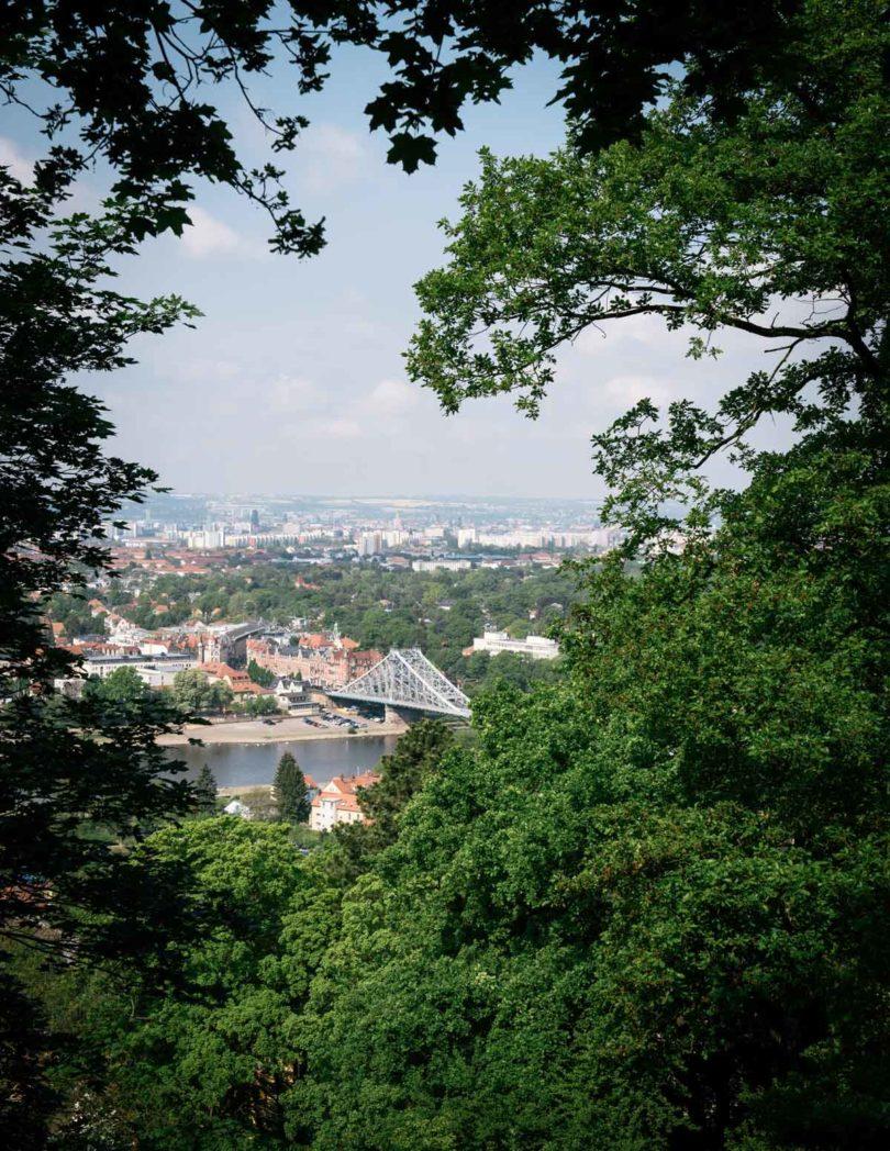 Von seinem Haus in Dresden blickt Adler aufLoschwitzer Brücke,