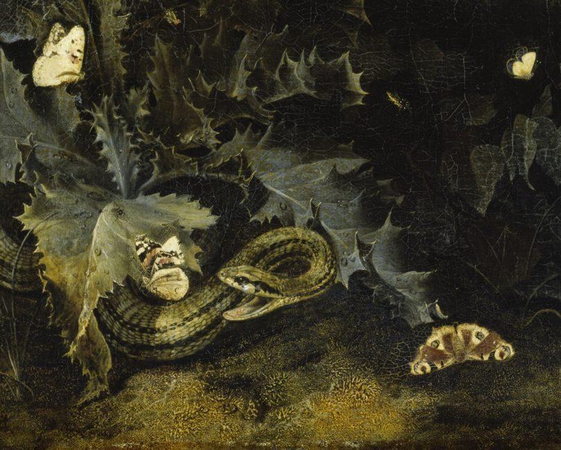 Otto Marseus van Schrieck,