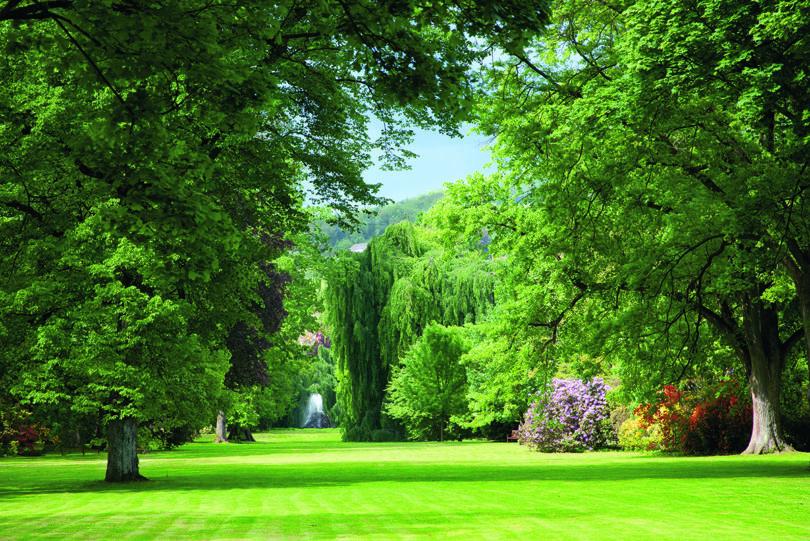 Baden-Badens Flaniermeile, die Lichtentaler Allee, ist ein einzigartiges Naturdenkmal (Copyright: Baden-Baden Kur & Tourismus GmbH)