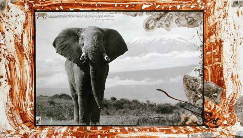 Twin Elands, 1972/2007 © 2020 Peter Beard (VG Bild-Kunst, Bonn, 2020)