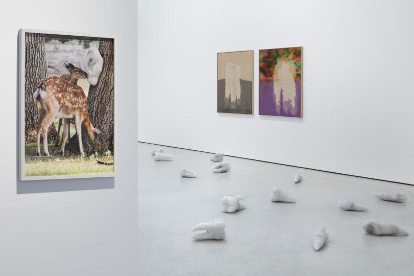 Installationsansicht in den Räumen der Galerie, Courtesy der Künstler, © Galerie Zink (VG Bild-Kunst, Bonn, 2020)